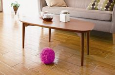 koosh ball roomba-Cool Kitchen Essentials: 50 accessories you can't eat without