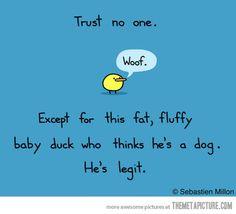 He's legit…
