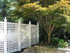 Backyard Lattice Fence IMG_0425, via Flickr.