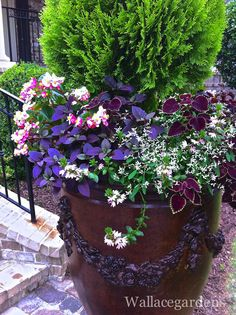 {In the Garden} Q&A with Nancy Wallace of Wallace Gardens | Red, White & Grew™ | Pamela Price