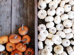 Pumpkins | Danny De Velis | VSCO Grid