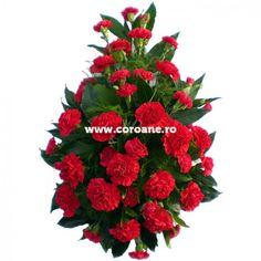 Jerba din garoafe rosii - un ultim omagiu simplu, dar plin de sentimente de dor si dragoste. Comanda online aceasta jerba speciala, realizata din 40 de garoafe rosii, pe baza de verdeata proaspata. Plants, Plant, Planets