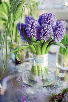 Lavender Hyacinth ...SO Pretty