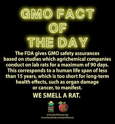 The Agrichemical industry likes to rip apart independent safety studies and discredit independent scientists that find health or environmental harm from their GMOs. All the while, industry funded studies are woefully inadequate and biased.