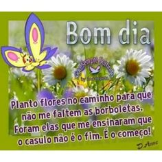 #Bomdia #paz#amor #poesias #harmonia #frases #encantosdefrases #Deus #mensagens #pensamentos #sexta #inlove