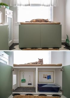 10 Ideas For Hiding Your Cat Litter Box - - We've compiled a list of the most stylish litter box covers out there to give you some inspiration for concealing your own cat's litter box. Hiding Cat Litter Box, Hidden Litter Boxes, Litter Box Covers, Cat Litter Boxes, Cat Litter Cabinet, Cat Litter Box Enclosure, Cat Furniture, White Furniture, Barbie Furniture