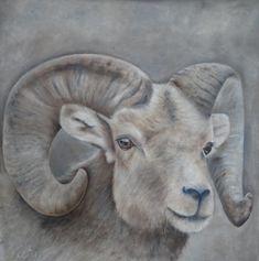 Wilma Westerlaken - Ram