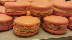 Pink grapefruit and anise Macarons