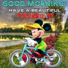 Good Morning, Have A Beautiful Thursday!