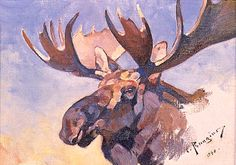 Carl Rungius - Moose Portrait