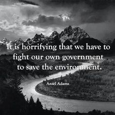Fight Government to save environment
