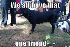 We all have that one friend and that friend would be me :)
