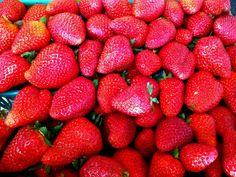 カリフォルニアの苺 / organic strawberries in California, USA