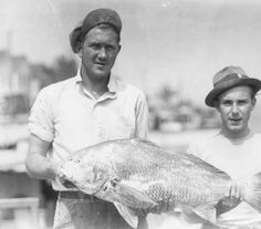 June 12, 1936, 40 lb. drum fish, Bowers Beach, DE.  RG 1380.006 Board of Agriculture Glass Negative Collection :: Delaware Public Archives
