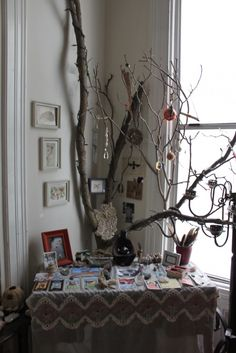 I want a big tree branch like this one to decorate in my altar space!