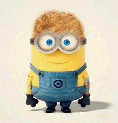 Ed Sheeran Minion! It even has his tattoos!!!