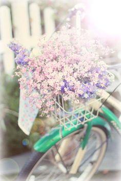Pretty little flowers Little Flowers, Pretty Flowers, Happy Flowers, Pink Flowers, Bicycle Art, Vintage Stil, Vintage Cars, Fancy, Pretty Pastel
