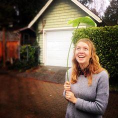 fabulous vancouver florist Might be a rainy Vancouver day, but Emily has her giant Anthurium to keep her dry. #flowers #florist #anthurium #rain #flowerlove #westvanflorist #westvan #vancouver #photooftheday #picoftheday #rainy by @westvanflorist  #vancouverflorist #vancouverflorist #vancouverwedding #vancouverweddingdosanddonts