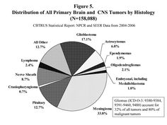 Ependymoma Statistical Report: The CERN Foundation, in collaboration with the Central Brain Tumor Registry of the United States (CBTRUS), has prepared this report on the incidence, prevalence, lifetime risk, and survival associated with ependymoma.