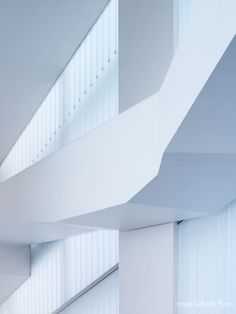 Gallery - The Nelson-Atkins Museum of Art / Steven Holl Architects - 17
