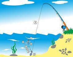 Chytání sumců ve vodním sloupci na chomáč rousnic pomocí korku » Rybářský rozcestník Catfish, Boat, Outdoor Decor, Fishing, Dinghy, Boats, Peaches, Pisces, Sleep