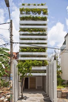 "A walled terrace of green - a twist on the traditional Vietnamese ""tube"" house - and only a hundred and fifty thousand to build!"