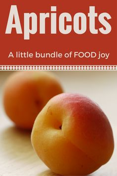 Flavor and nutrients (Vitamin A, potassium, fiber) bundled into a delicious small package ... enjoy apricots fresh, dried, or canned. Tips and recipes from Nebraska Extension.