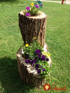 This post contains the most impressive tree stump planters. These planters will definitely make you have an outstanding small garden. Garden Deco, Garden Yard Ideas, Garden Projects, Garden Art, Garden Design, Garden Hose, Tree Stump Planter, Log Planter, Pumpkin Planter