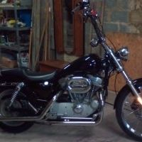Harley Davidson 883cc sportster à vendre