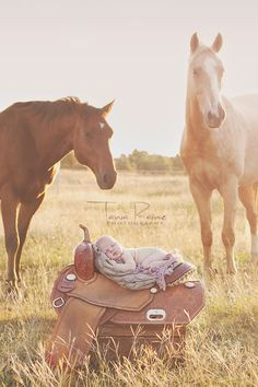 Newborn baby on her Mothers saddle. PLEASE NOTE - This is a composite image!  Baby was not near the horses at all and whilst on the saddle she was supported and safe by her dad.  Do not attempt a shot like this as it appears, There is no image important enough to risk the safety of the baby.  www.taniarainephotography.com