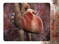 3D Medical Animation Congestive Heart Failure Animation...such a great video!!