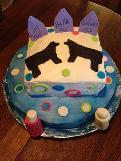 Show Cattle Cake