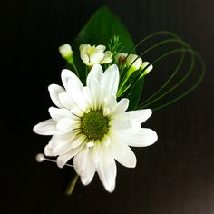 Daisy boutonniere @Megan Southwell Taggart @Jodie White Hinkle Moms and Grammas