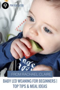 BABY LED WEANING FOR BEGINNERS | Top Tips & Meal Ideas. -