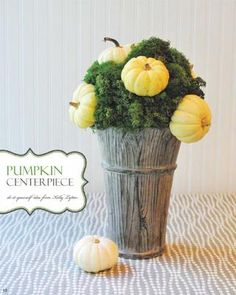 DIY moss and pumpkin centerpiece idea for a natural #thanksgiving table  #holidayentertaining