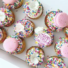 Delicious cupcakes topped with sprinkles and French macarons made by Jenna Rae Cakes