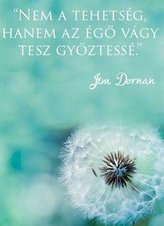 Jim Dornan gondolata a tehetségről. Positive Thoughts, Positive Quotes, Motivational Quotes, Inspirational Quotes, Soul Quotes, Life Quotes, Mantra, Clean9, Morning Greetings Quotes
