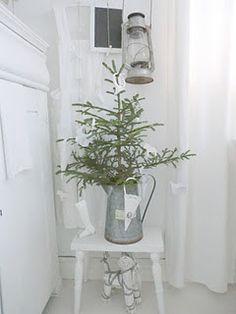 mini tree in jug on shabby stool