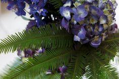SO SCHÖNE BLUMEN GIBT'S! Kramer & Kramer bietet ein täglich frisches Sortiment ausgewählter Schnittblumen. Für Hochzeiten und alle denkbaren Feiern, die nach Blumenschmuck verlangen, stellen wir aufregende und ungewöhnliche Arrangements zusammen. Fad und gewöhnlich gibt's auch woanders. Plant Leaves, Plants, Giving Flowers, Cut Flowers, Floral Headdress, Beautiful Flowers, Nice Asses, Plant, Planets