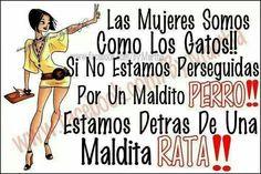 In spanish but so funny