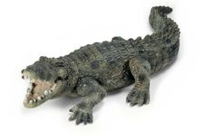 Schleich Crocodile by Schleich. $4.56. Zoological Name: Osteolaemus tetraspis. 3.4 in L x 6.4 in W x 1.4 in H. Fun Fact: Crocodiles live up to one hundred years because their teeth are replaced as they wear out.. Conservation Status: Vulnerable (VU). Primary Habitat: Wetlands. Crocodiles are scaly reptiles known for their toothy grin and great strength. Waiting for their prey, crocodiles creep around in muddy water and then jump out to catch their next meal. Crocodiles...