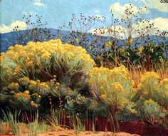Chamisa in Bloom painting by Ernest Martin Hennings at Harwood Museum of Art. Taos, NM.///I think this is rabbit brush, and it stinks like crazy. You have to hold your breath when you walk past it. It has a solvent smell. It could probably be made into gasoline. Note by Roger Carrier