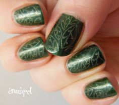 Zoya Nail Polish in Ray with Stamping!