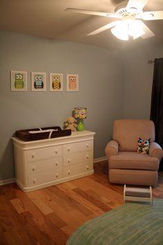 Baby boy owl theme. @Kendra Bettelyoun