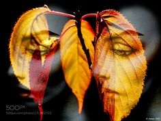 Women and leaves by gabihampe