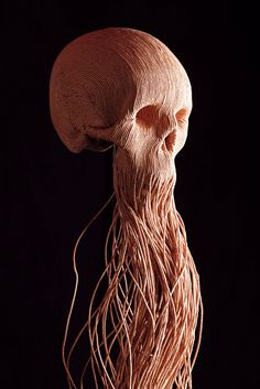 corded skull by Jim Skull