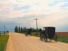 Minnesota's Amish population has grown steadily over the past four decades.  The conservative Amish at Harmony, Minnesota do not use the slow moving vehicle triangle.
