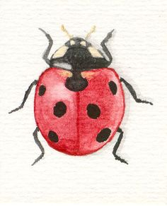 Watercolor ladybugs | Recent Photos The Commons Getty Collection Galleries World Map App ...