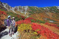 nagano<紅葉>中央アルプスの千畳敷カールで盛り