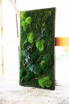 "40"" x 18"" LARGE Plant Painting- No Care Green Wall Art. Real Preserved Plants in Reclaimed Wood Frame & Natural Branches"